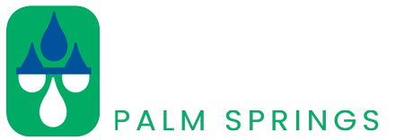 Rayne of Palm Springs logo